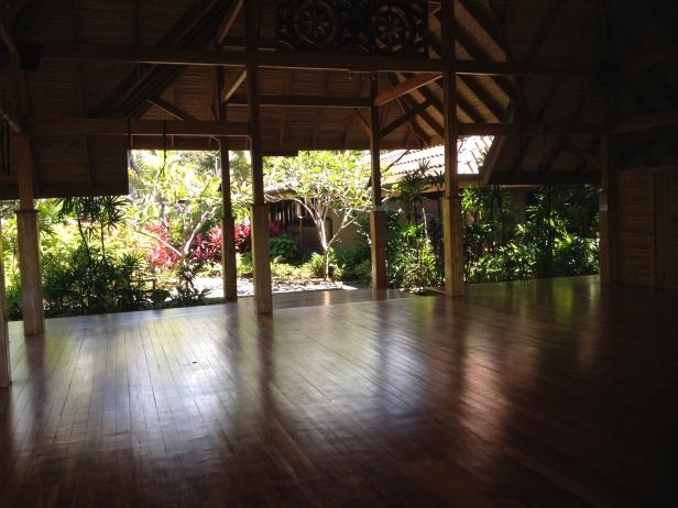bodhi-tree-yoga-nosara