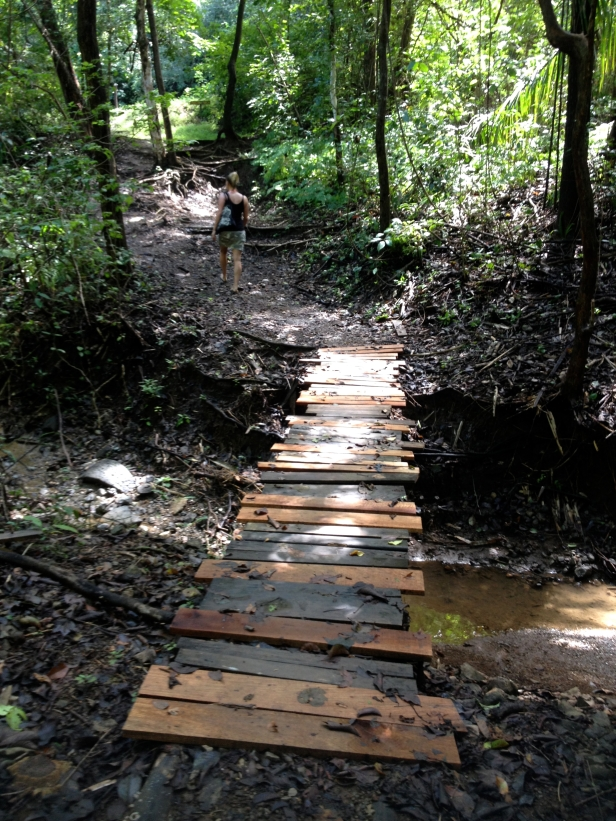 nosara-trail